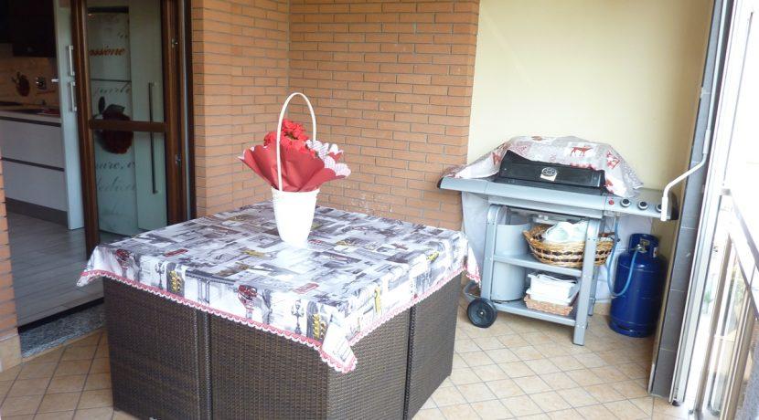 vendita-Torino-Parella-AsinaridiBernezzoP1060623