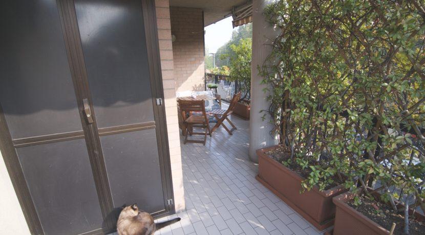Vendita-Torino-Parella-TelesioTerrazzi e balcone 6